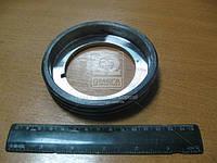 Кольцо маслонагнетающее (производитель Россия) 15.1770092