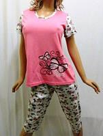 Пижама женская футболка и бриджи большие размеры 52,54,56, Харьков