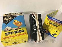 Терморегулятор для інкубатора ТРТ-1000 високоточний безконтактний