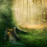 """Детские Фотообои """"Волшебное дерево"""" , фото 1"""