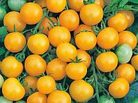 Томат Черри Хани Дропс F1 ранний  гибрид  кустового томата типа Черри сорт желтый
