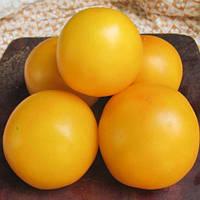 Низкорослые томаты Элоу Чир F1 ранний  урожайный гибрид  средне-рослого томата желтого цвета