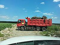 Перевозка сыпучих, мусора, грунта 3х и 4х осными самосвалами.