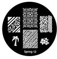Диск Spring 12