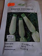 Семена кабачка 30шт. сорт Искандер F1
