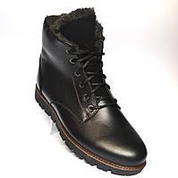 Кожаные зимние мужские ботинки Rosso Avangard. Carlo Berz Aeron черные