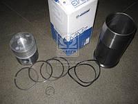 Гильзо-комплект Д 240, Д65 (ГП+Кольца+стопорные кольцы+уплотнитель) (группа С) (МОТОРДЕТАЛЬ) Д65-1000105-С