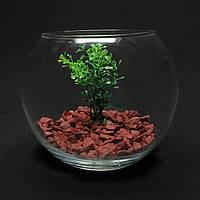 Круглый аквариум 1,4 л, ваза, фото 1