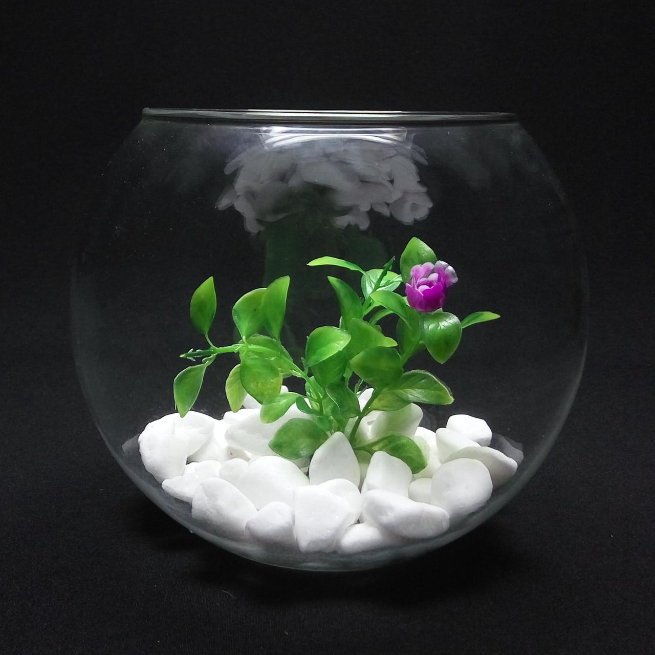 Круглый аквариум 3,5 л, ваза