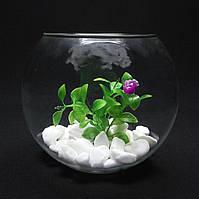 Круглый аквариум 3,5 л, ваза, фото 1