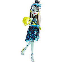 Кукла Френки Штейн Monster High Welcome to Monster High Doll  Frankie Stein