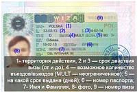 Национальная Рабочая виза 180/360
