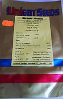 Семена томата  Юджи 169  F1 1000  шт