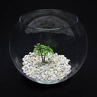Круглый аквариум 5,5 л, ваза, фото 1