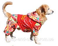 """Утепленный дождевик """"Adidog - Флаг"""" для собак крупных пород. Одежда для собак."""