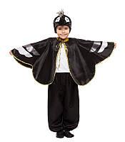 Костюм Вороны для мальчика (4 - 9 лет)