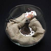 Круглые аквариумы, аквариумы - шары, аквариумы бокалы, фото 1
