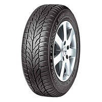 Зимняя шина Paxaro Winter (215/55 R16 93H)
