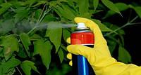 Зачем вашим растениям фунгициды?