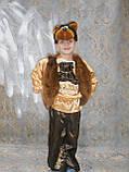 Карнавальный костюм медведя  прокат киев, фото 2