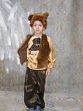 Карнавальный костюм медведя  прокат киев, фото 3