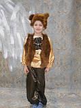 Карнавальный костюм медведя  прокат киев, фото 4