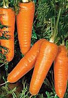 Морква,Редко, (100 000семян), Syngenta, Швейцарія