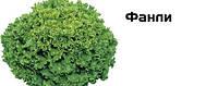 Салат листковий,Фанлі F1, (5000семян), Syngenta, Швейцарія
