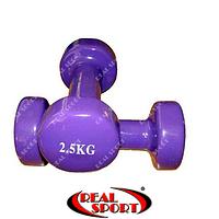 Гантели для фитнеса виниловые по 2,5 кг. пара, фиолетовые (металл обрезиненный)