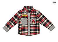 Рубашка Angry Birds для мальчика. 100 см
