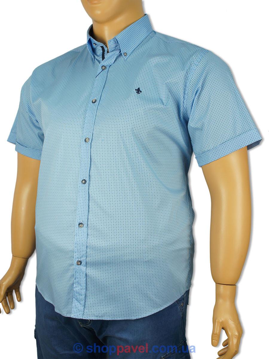 Рубашка мужская большого размера Barcotti 0191-86