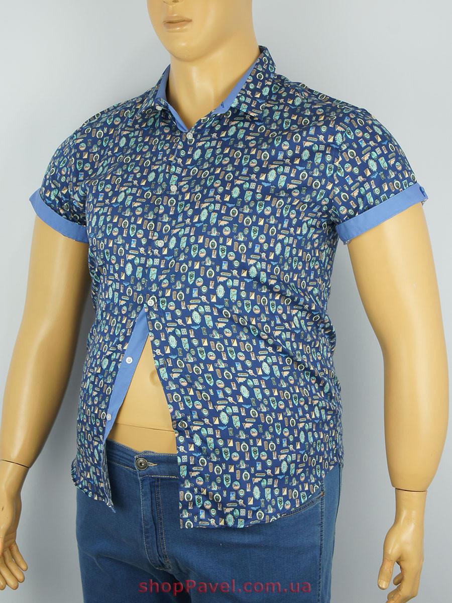 Мужская рубашка Еnisse  EGK51342
