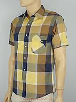 Рубашка мужская Love Man в клетку разных цветов