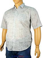Рубашка мужская большого размера Micele Placido марлевка