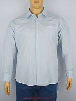 32d94187d72 Магазин мужской одежды