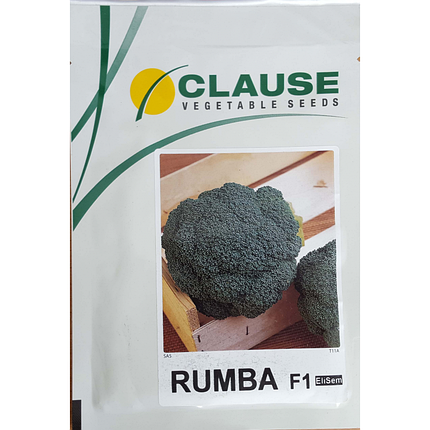 Семена капусты Румба F1 (Clause), 2500 семян — средне-ранняя (65-75 дней), брокколи, фото 2