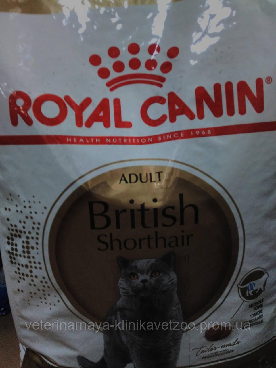 Royal Canin(British)10кг для британских кошек после 1 года