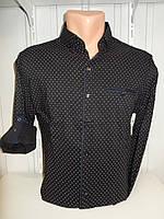 Рубашка мужская Alberto Maldini рукав трансформер, стрейч узор №5 004 \ купить рубашку