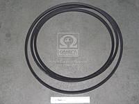 Ремень C 5000 (СВ-5000) (пр-во Rubena) C 5000