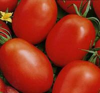 Семена томата Новичок (весовые опт от производителя)