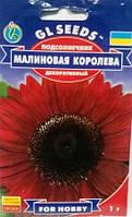 Соняшник Малинова Королева 1г (GL seeds)