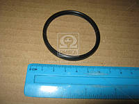 Прокладка термостата (пр-во Toyota) 1632576010