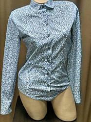 Блуза боди белого цвета в синие огурцы