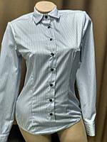 Блуза боди белого цвета в мелкую черную клеточку , 100% хлопок