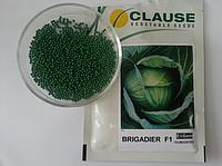 Семена капусты Бригадир F1 (Clause) 2500 семян - средне-поздняя (110-120 дней), белокочанная