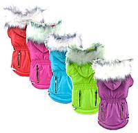 Теплое зимнее пальто с капюшоном для собак Candy Color Coat