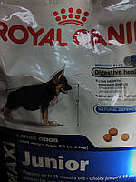 Royal Canin(maxi junior)корм для щенков крупных пород  от2 до15мес.