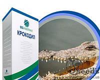 "Свекла сахарная  ""Крокодил"" (драже) цена за посевную единицу,  Sesvanderhave"