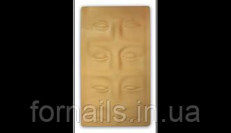 Муляж верхней части лица для мастеров перманентного макияжа,Kodi