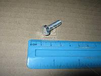 Болт М6х20 брызговика задн. ВАЗ, клапана делителя КамАЗ (покупн. КАМАЗ) 1/09024/21